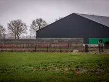 Nieuw hoofdstuk in kwestie Deurnese hovenier: muur zonder vergunning