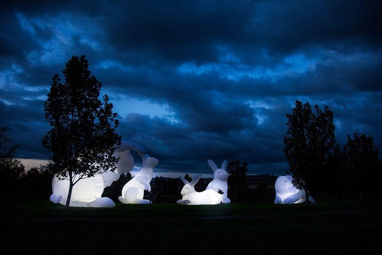 De 7 meter hoge konijnen, een werk van de Australische Amanda Parer zullen de Oude Beestenmarkt sieren.