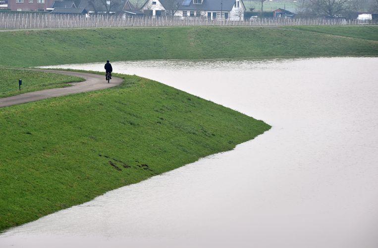 Hoog water bij Winssen. Beeld Marcel van den Bergh