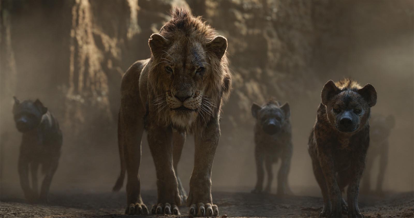 Scène uit de Lion King.