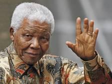 Drie Afrikaanse kunstenaars in de race om monument Mandela