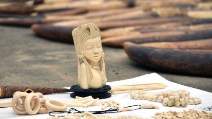 Ivoorkust onderschept voor ruim half miljoen euro aan ivoor en schubben