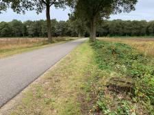 Rentmeester Landgoed de Utrecht bij Esbeek moet illegaal gerooide bomen herplanten