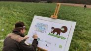 Plan Boommarter leverde al 15 hectare extra bos op in Halle: Stad en organisaties werken komende jaren verder samen