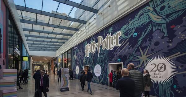 13 beste afbeeldingen van Harry Potter Vans OMG Harry