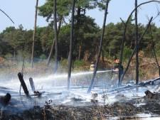 Bosbrand bij Maarheeze onder controle
