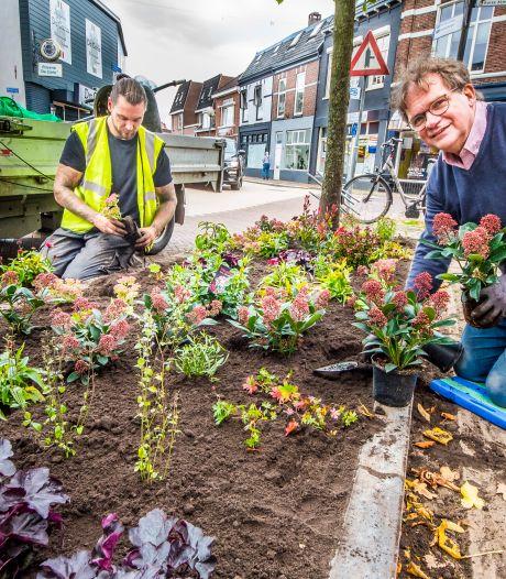Topondernemer Gert Pezij graag op de knieën om bloemetjes buiten te zetten in zijn geliefde Almelo