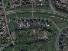 Zorgen over bomen langs Gorcumse Lingsedijk: 'Karakteristiek laantje moet blijven'