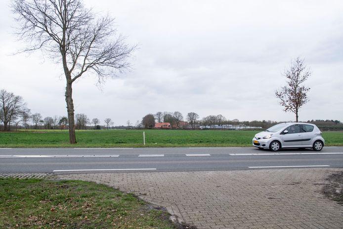 Dit is nu nog het uitzicht vanaf de Hexelseweg op de plek waar het zonnepark in Hoge Hexel moet komen.