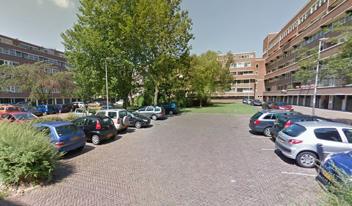Een deel van de Raaphorst in Leiderdorp