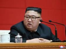 Kim Jong Un oblige les Nord-Coréens à abandonner leurs chiens pour qu'ils soient mangés