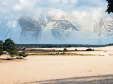Waalwijk verkiest eigen natuur boven Van Gogh Nationaal Park: 'Dat is ons verhaal'