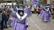 45ste carnavalsstoet trekt door Denderleeuwse straten