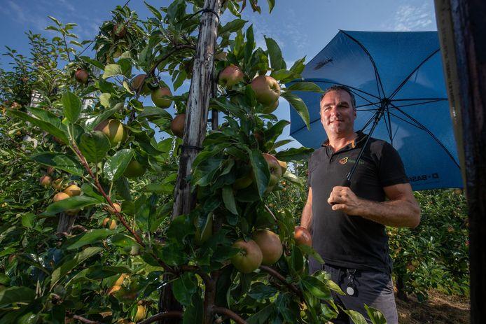 Fruitteler Leander Vereecken uit Dronten besproeit zijn appels tegen de hitte. Veel appels zijn al getroffen door de 'zonnebrand'. Appels vertonen dan verbrande plekken die daarna gan rotten.