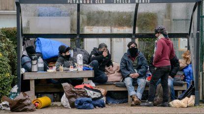 Sterke stijging van het aantal opgepakte illegale migranten in Belgische zeehavens