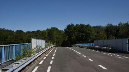 Ecoduct over E19 moet levens redden: dieren kunnen in toekomst veilig snelweg oversteken