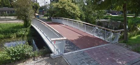 Geen paaltjes op Veenendaalse fietsbrug