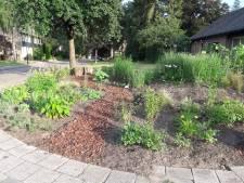 Ugchelense buurttuin als voorbeeld voor rest van Apeldoorn