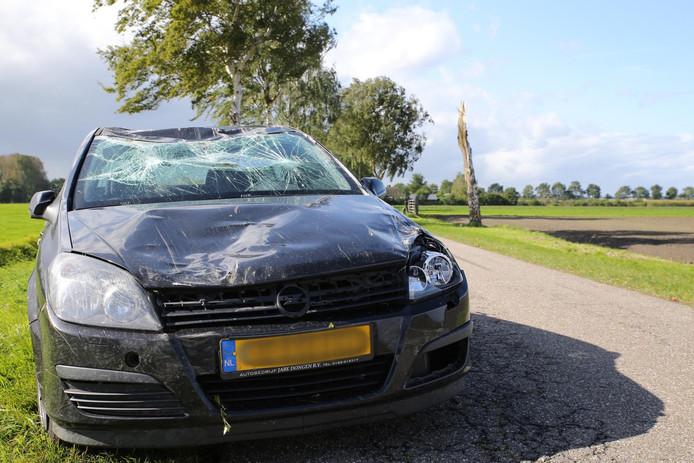 Boom valt op auto in Oosteind.