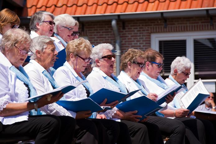 De Zilvermeeuwen zingen in het Hofje Onder den Toren tijdens een eerdere editie van Middelburg VolKoren.