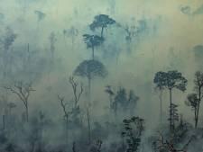 De Amazone huilt: nu al ruim 120.000 hectare ten prooi gevallen aan speculanten