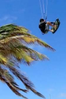 Ce kitesurfeur utilise un cocotier pour sa mise à l'eau