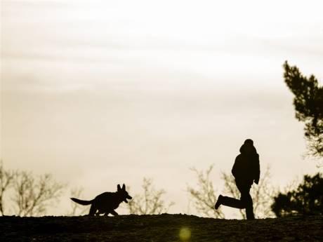 Losloopverbod voor honden in Hania's Polder volgend jaar wellicht versoepeld