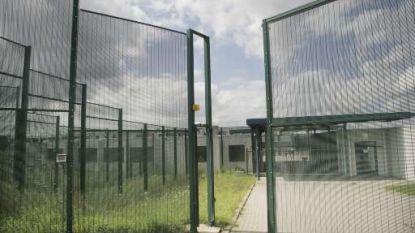 Bedwantsen jagen asielzoekers uit 127bis