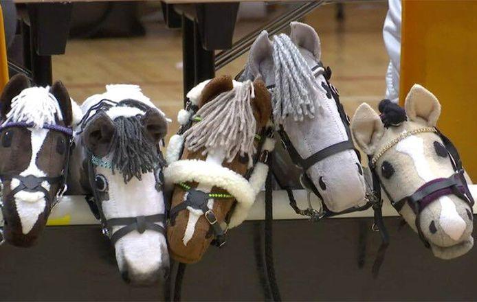 Une semaine à dada sur un cheval de bois, pourquoi pas?