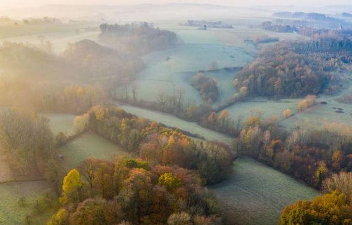 Natuurgebied Het Burreken.