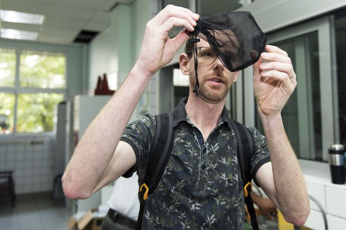 Insectenkundige Sander Koenraadt, verbonden aan de universiteit van Wageningen, bekijkt een net waarin enkele muskieten zijn gevangen.