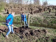 Leerlingen uit Gameren en Nederhemert planten bomen