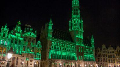 Brussel staat op de 27ste plaats in wereldwijde Groene Stedenindex