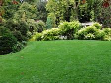Groene vingers: steeds meer Nederlanders hebben een grote tuin