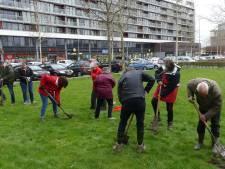 SP Middelburg gaat verder met aanleg bloemenweide voor wilde bijen