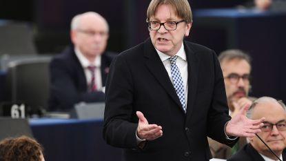 """Brexit-uitstel verdeelt Europees Parlement: """"Meneer Verhofstadt, u krijgt applaus van Nigel Farage. Reden om nog eens na te denken"""""""