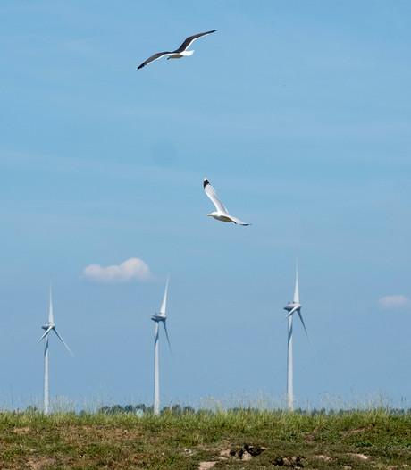 LochemEnergie blijft achter windmolens in Zutphen staan