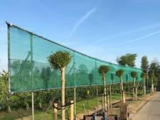 Speciaal scherm in Noordeloos moet vleermuizen beschermen nu de bomen zijn gekapt