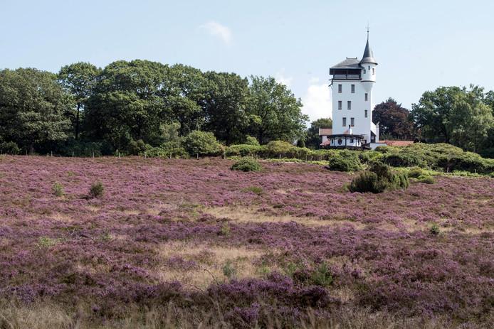 Het grote heidegebied op de Sallandse Heuvelrug wordt fors uitgebreid ten behoeve van flora en fauna.