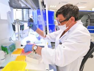 Coronacijfers stijgen steeds sneller in Zuid-West-Vlaanderen: nieuw triest weekrecord van 624 positieve testen
