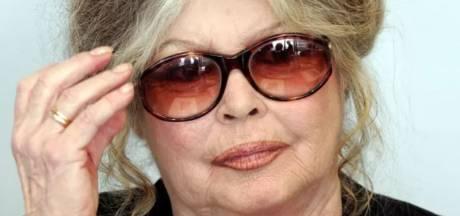 Brigitte Bardot demande la clémence pour Curtis, le chien accusé d'être à l'origine de la mort d'Elisa Pilarski