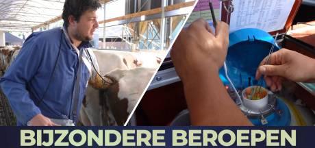 Job is koeieninseminator: 'Heel leuk om met de vruchtbaarheid van de koeien om te gaan'