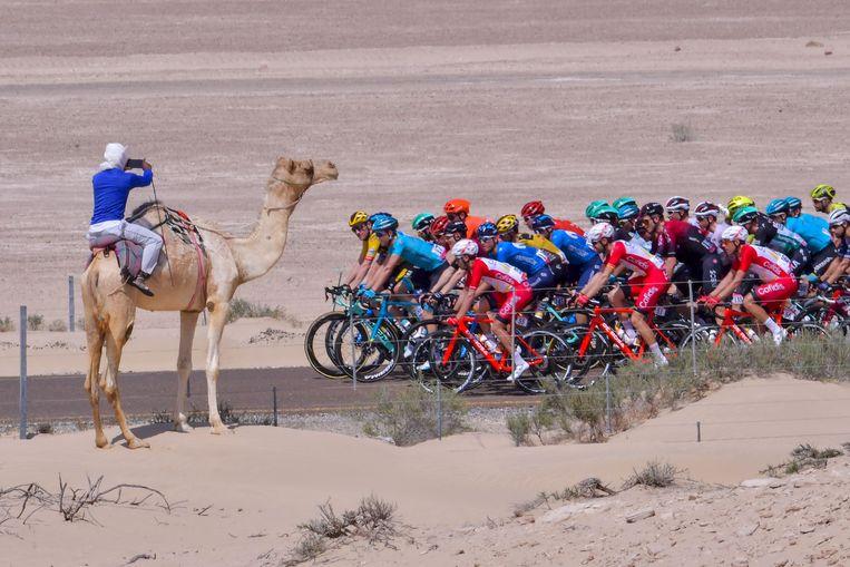 Het peloton trekt door de Verenigde Arabische Emiraten. Het coronavirus had daar op 24 februari nog niet toegeslagen. Beeld Giuseppe Cacace / AFP
