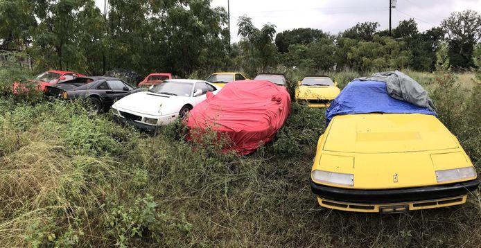 Ferrari's staan tien jaar in een veld weg te roesten