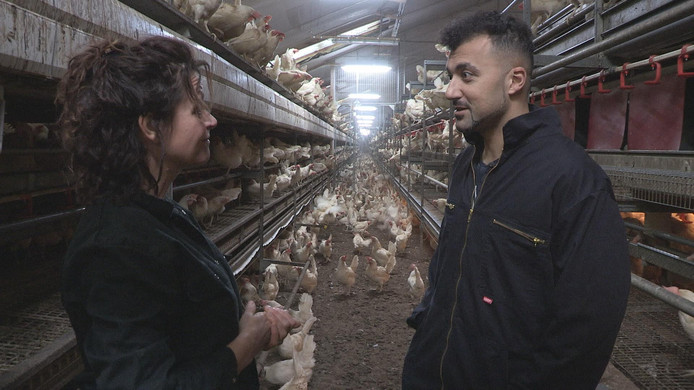 Özcan Akyol ontmoet brievenschrijfster en kippenboerin Jolanda Kieftenbeld