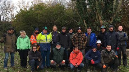 Regionaal Landschap Schelde-Durme leert cursisten knotten met kettingzaag