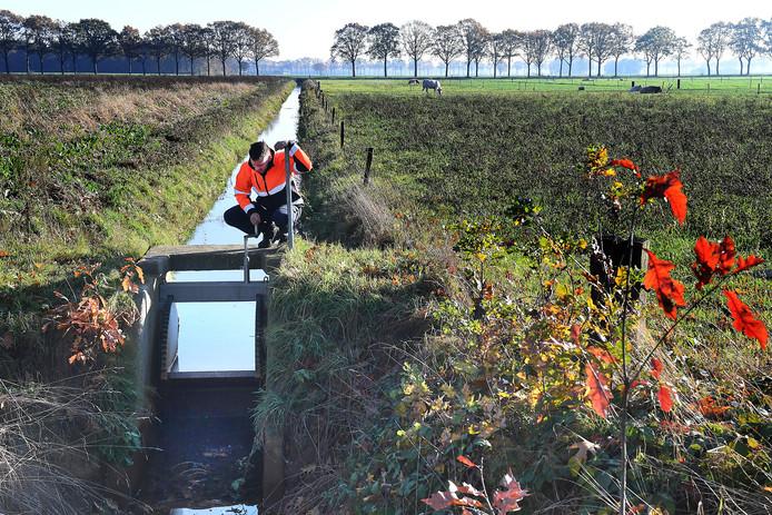 Bij Landhorst wordt het water tegengehouden met een stuw om het grondwaterpeil te herstelle
