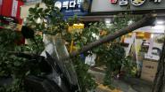 Al 8 doden en 26 gewonden door tyfoon in Korea