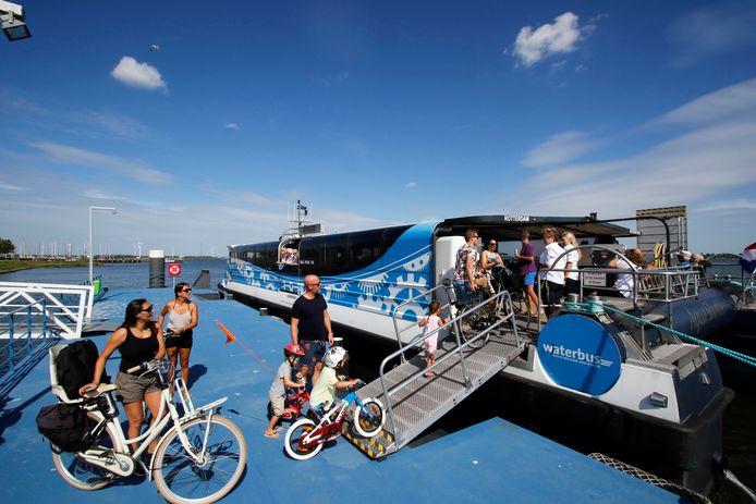 Het is vakantietijd, dus jonge gezinnen gaan maar wat graag met de fiets aan boord van de Waterbus in Willemstad met eindbestemming het natuurgebied Tiengemeten. Het aantal passagiers is dit jaar al fors toegenomen.