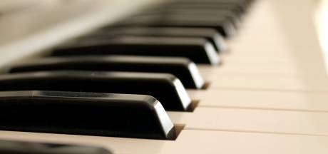 Klassieke muziek in Mierlose tuin